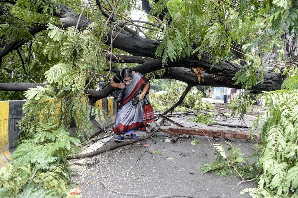 TOPSHOT - A woman makes her way under a fallen tree on a street following heavy rains in Hyderabad on October 14, 2020. (Photo by NOAH SEELAM / AFP) (Photo by NOAH SEELAM/AFP via Getty Images)