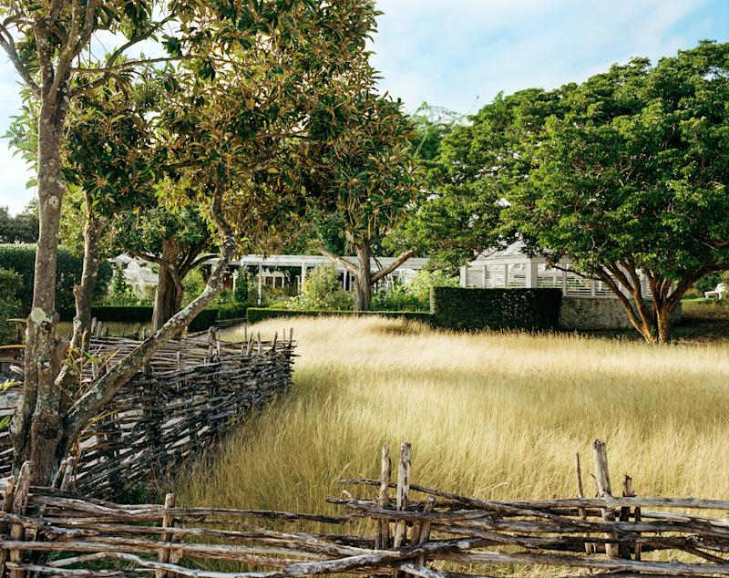 A golden wild-grass meadow is enclosed by traditional wattle fencing—the handiwork of an island craftsman. In this story: Sittings Editor: Miranda Brooks. Hair: Wesley O'Meara; Makeup: Berta Camal.