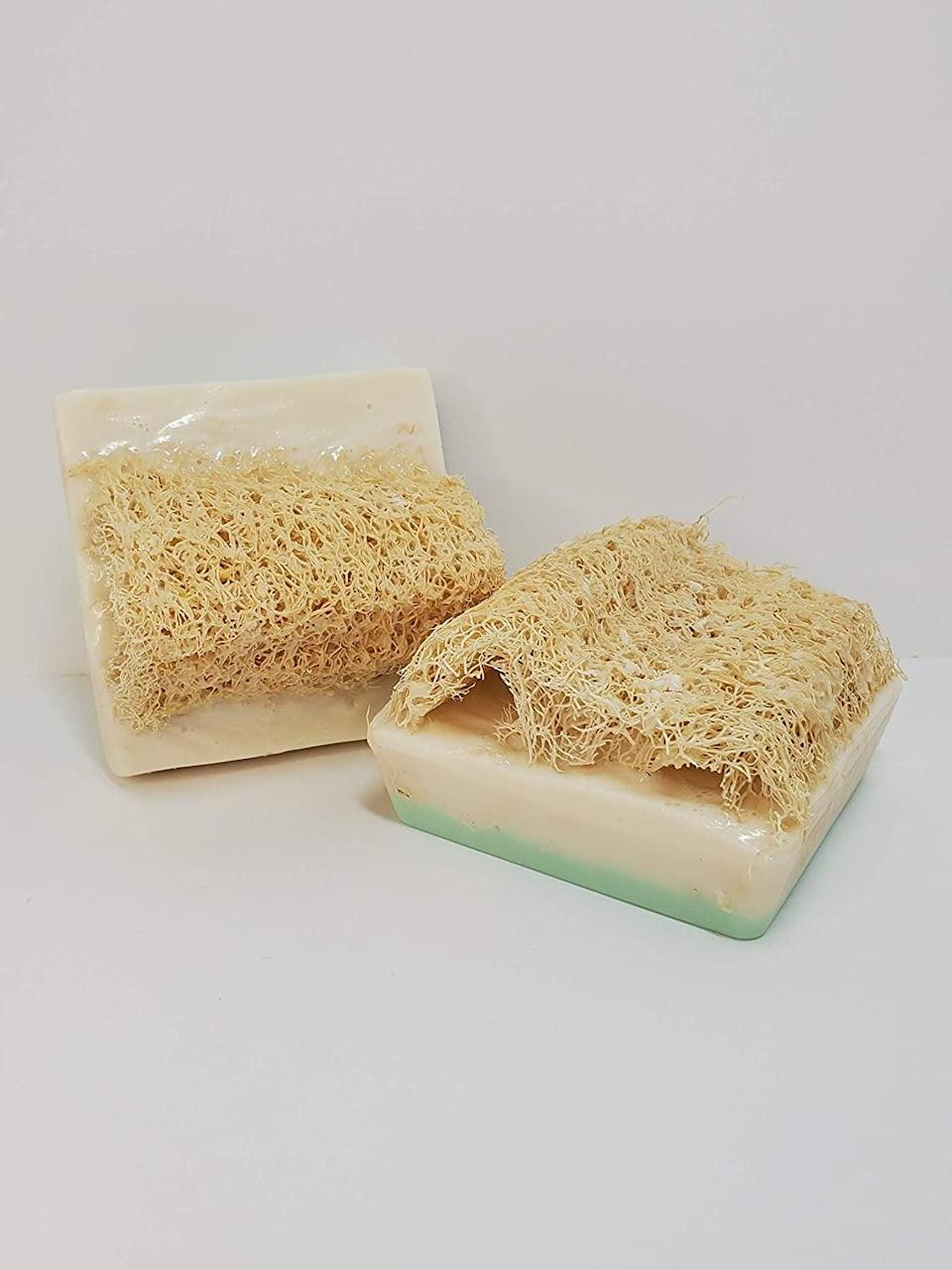 <p>Exfoliate and cleanse with the <span>Luffa Soap Eucalyptus Rosemary Exfoliating Soap</span> ($8), made with a natural loofah sponge.</p>