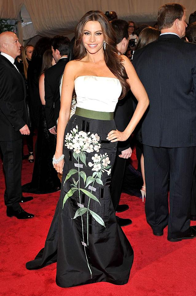"""Modern Family's"" resident hot mama Sofia Vergara dazzled in diamond accents and a strapless, color-blocked Carolina Herrera frock. Stephen Lovekin/<a href=""http://www.gettyimages.com/"" target=""new"">GettyImages.com</a> - May 2, 2011"