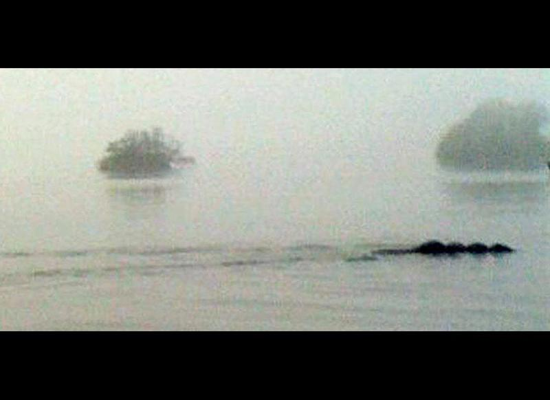 """In England, a kayaker took this photo on Lake Windemere, near Bowness in Cumbria. """"At a distance, I thought it was some sort of large dog,"""" said Tom Pickles. """"Then I realized just how long it was."""" Ever since the first reports of Bow-Nessie emerged in 2006 from Lake Windermere, a legend has taken root with people wondering if this could be a not-too-distant relative of the legendary Loch Ness Monster of Scotland."""