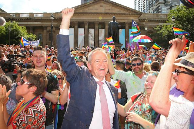 The leader of Australia's Labor Party, Bill Shorten, joins the cheering at the state library as the results of the nationwide poll on legalizing same-sex marriage are announced.