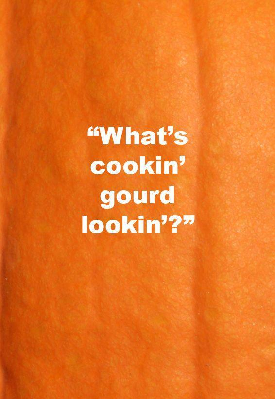 <p>How's about cooking <em>pumpkin</em> up with me?</p>