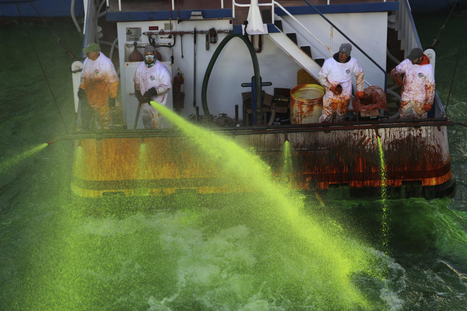 Crews on boats begin dumping green dye into The Chicago River on Saturday, March 13, 2021 in Chicago. The river has been dyed a bright shade of green ahead of St. Patrick's Day, after Mayor Lori Lightfoot reversed an earlier decision not to tint the waterway for second year because of the coronavirus pandemic. (Abel Uribe /Chicago Tribune via AP)