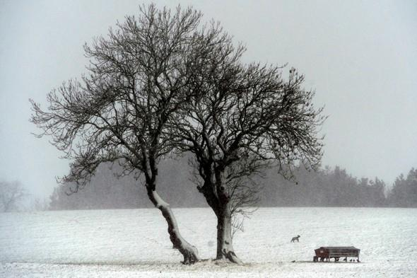 Prepare for the coldest May in 100 years