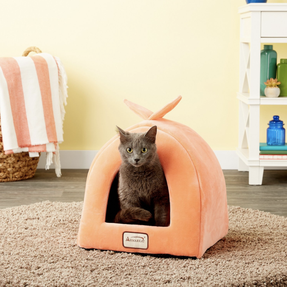 This adorable bed is for both dogs and kitties. (Photo: Chewy)