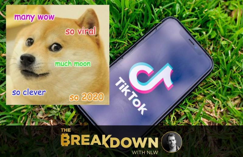 TikTok Let the Doge Out: Why TikTok Doge Is Everything About 2020 Finance in One Story