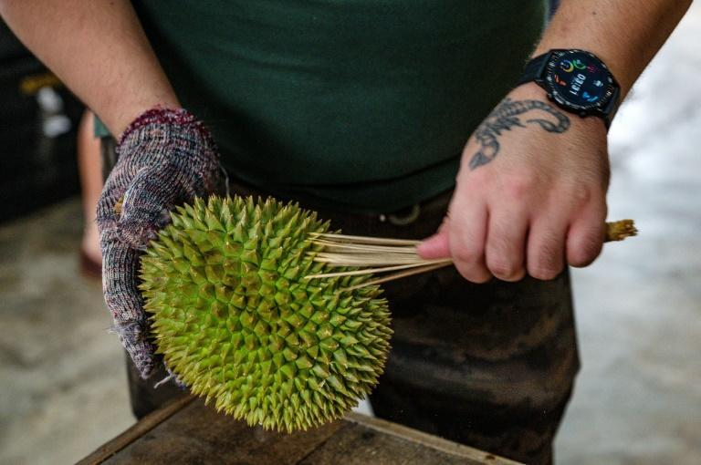 Online orders are still only a fraction of business for durian traders in Malaysia