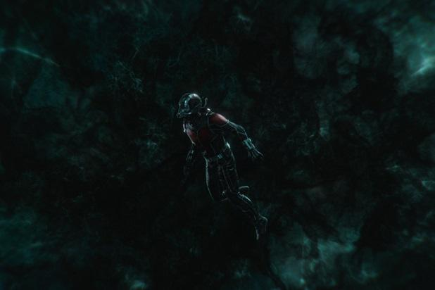 ant-man and the wasp paul rudd ant-man quantum realm
