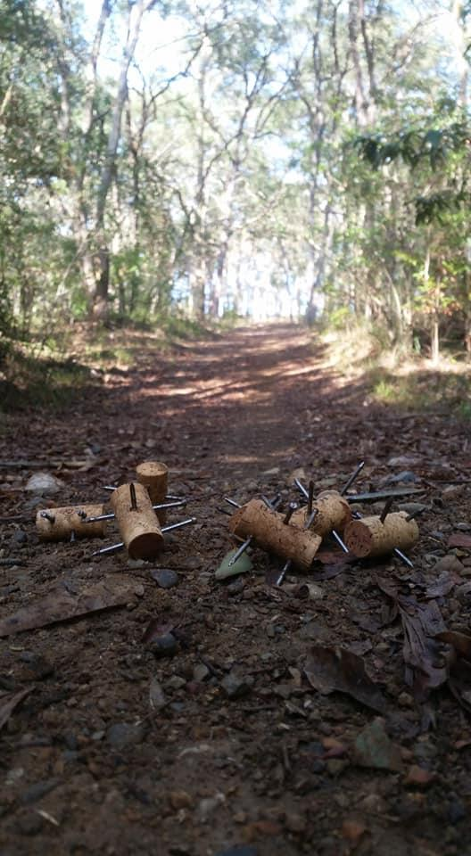 Paul Roberts made the disturbing discovery during a morning walk on the Marmong Point trail. Source: Facebook