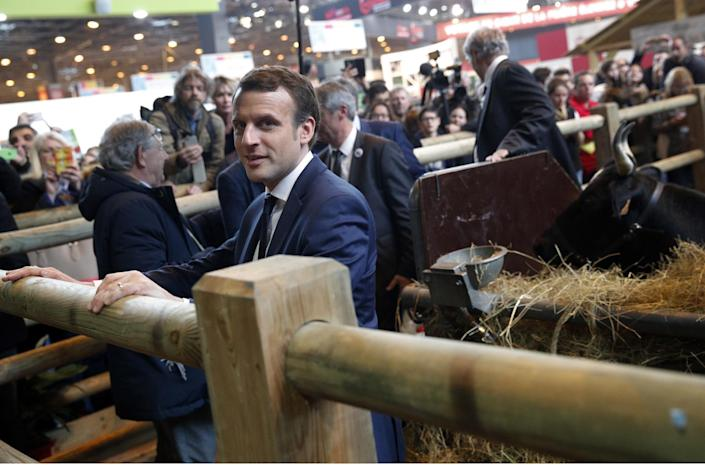 French centrist presidential candidate Emmanuel Macron poses next to the cow Fine, symbol of the 2017 Agriculture Fair in Paris, Wednesday, March 1, 2017. The first French presidential ballot will take place on April 23 and the two top candidates go into a runoff on May 7. (AP Photo/Christophe Ena)