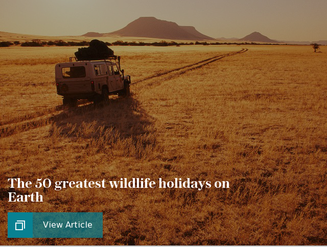 The 50 greatest wildlife holidays on Earth