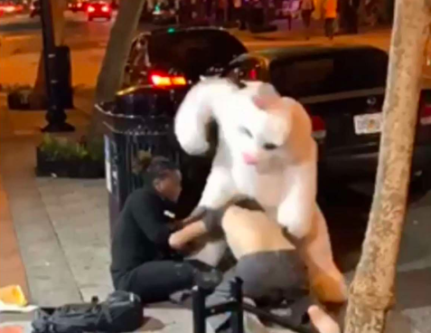 A Bad Bunny was on the loose in Florida this weekend — and we're not talkingabout the Latin singer