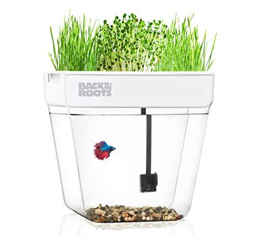 Water Garden, Self-Cleaning Fish Tank That Grows Food, Mini Aquaponic Ecosystem (Great Gardening Gift & Family Project) (Amazon / Amazon)
