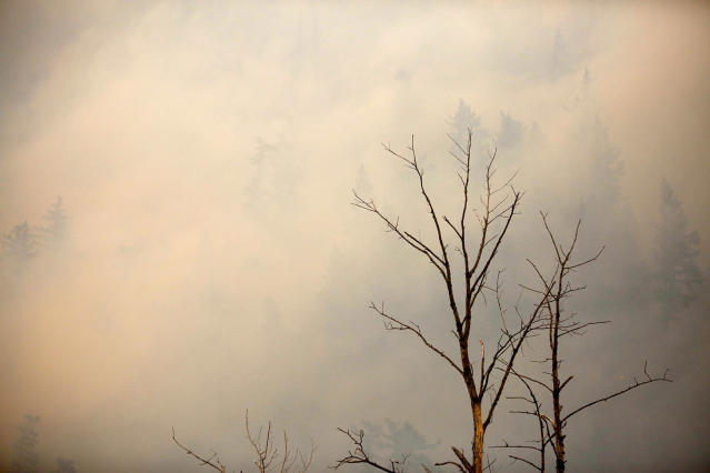 <p>The Eagle Creek fire has been burning in the Columbia River Gorge since Sept. 2, 2017. (Photo: Jim Ryan/The Oregonian via AP) </p>