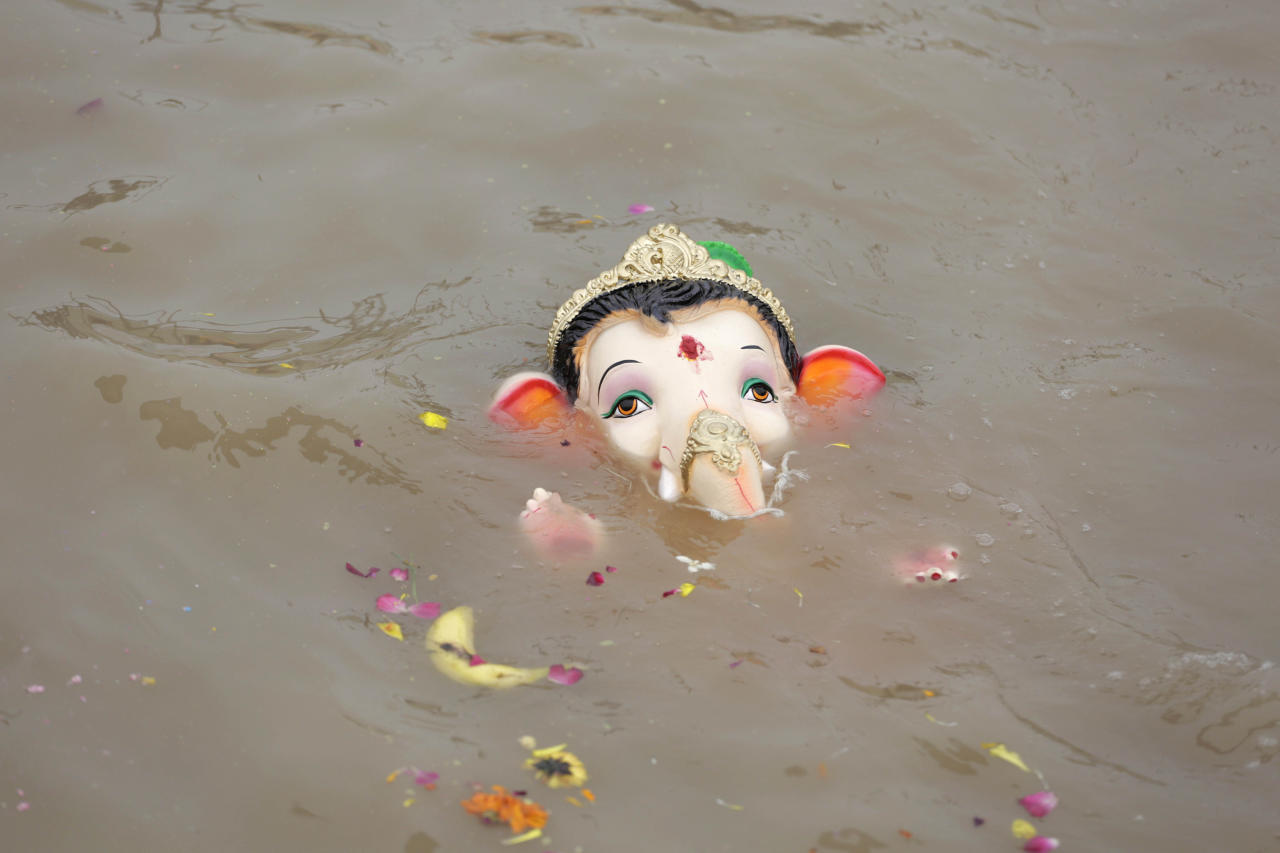 An idol of elephant-headed Hindu god Ganesha floats after its immersion in an artificial water body after worship on the final day of Ganesha Chaturthi festival in Ahmadabad, India, Thursday, Sept. 12, 2019. The festival is a celebration of the birth of Ganesha, the Hindu god of wisdom, prosperity and good fortune. (AP Photo/Ajit Solanki)