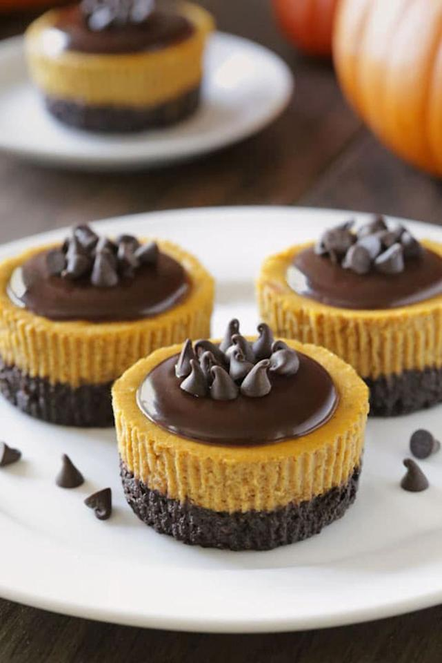 "<p>Stress about one less <a rel=""nofollow"" href=""https://www.countryliving.com/food-drinks/g637/thanksgiving-menus/"">Thanksgiving day menu</a> detail by whipping up these bite-size desserts ahead of time, and popping them in the freezer until needed. <br></p><p><strong>Get the recipe at <a rel=""nofollow"" href=""https://www.mybakingaddiction.com/mini-pumpkin-cheesecakes/"">My Baking Addiction</a>.</strong></p>"