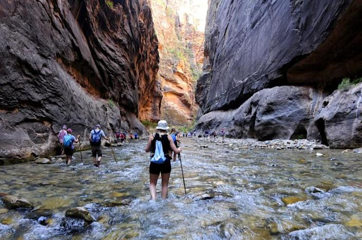 ZION NATIONAL PARK, UTAH AUGUST 5, 2019 -- The Virgin River snakes through The Narrows in Zion National Park. The Narrows is a popular hike in Zion National Park, featuring one of the world's best slot canyon hikes. (Marc Martin / Los Angeles Times)