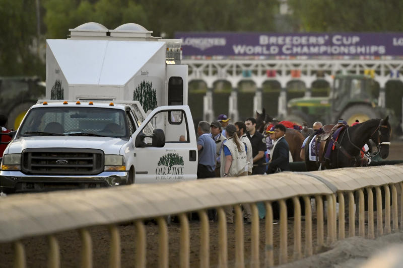 "Track workers treat Mongolian Groom it broke down during the Breeders' Cup Classic horse race at Santa Anita Park, Saturday, Nov. 2, 2019, in Arcadia, Calif. The jockey eased him up near the eighth pole in the stretch. The on-call vet says he has ""serious"" injury to leg. Was taken to equine hospital on the grounds. (AP Photo/Mark J. Terrill)"