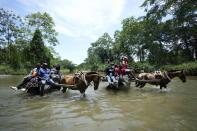 Migrants cross the Acandi River on horse carts, in Acandi, Colombia, Tuesday, Sept. 14, 2021. The migrants, following a well-beaten, multi-nation journey towards the U.S., will continue their journey through the jungle known as the Darien Gap. (AP Photo/Fernando Vergara)