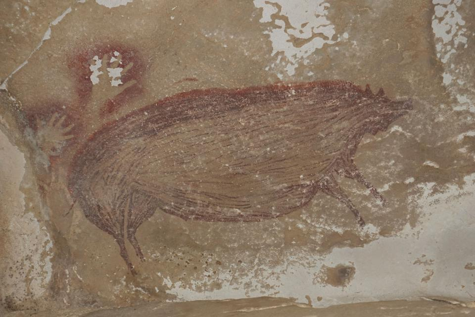 La peinture de cochon aurait 45.000 ans. (Photo: Maxime AUBERT / GRIFFITH UNIVERSITY / AFP)