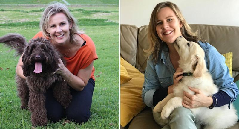 Sydney vet Dr Leigh Davidson from Your Vet Online shown with labradoodle dogs. She has revealed the signs your dog loves you.