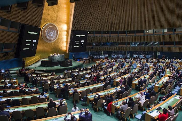 141 countries joined in drafting the treaty that they hope will increase pressure on nuclear states to take disarmament more seriously (AFP Photo/Amanda VOISARD)