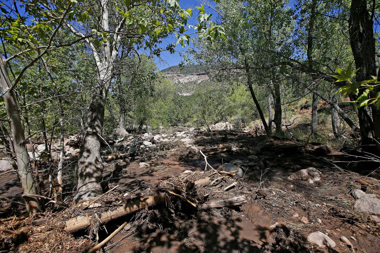 <p>Dead trees, other debris and mud come to a stop near the First Crossing recreation area during the search and rescue operation for a victim in a flash flood along the banks of the East Verde River Monday, July 17, 2017, in Payson, Ariz. The bodies of several children and adults have been found after Saturday's flash flooding poured over a popular swimming area in the Tonto National Forest. (AP Photo/Ross D. Franklin) </p>