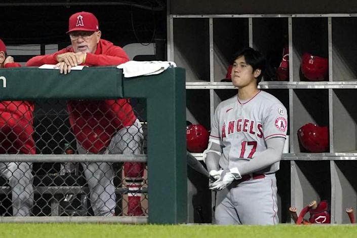 Los Angeles Angels manager Joe Maddon, left, and designated hitter Shohei Ohtani watch from the dugout during the fourth inning of the team's baseball game against the Chicago White Sox on Wednesday, Sept. 15, 2021, in Chicago. (AP Photo/Charles Rex Arbogast)