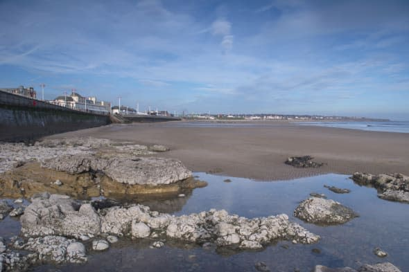 Man drowns off Sunderland coast trying to rescue dog