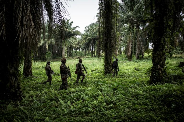 MONUSCO has around 17,000 members, making it one of the UN's biggest peacekeeping operations