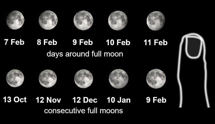"<span class=""caption"">Size comparisons of the Moon for consecutive days and full moons. Adjust the size of the image on your screen so the little finger on the right is the size of your little finger. Then hold the image at arms' length to achieve the size of the Moon as you would see it in the sky.</span> <span class=""attribution""><span class=""source"">Daniel Brown</span></span>"