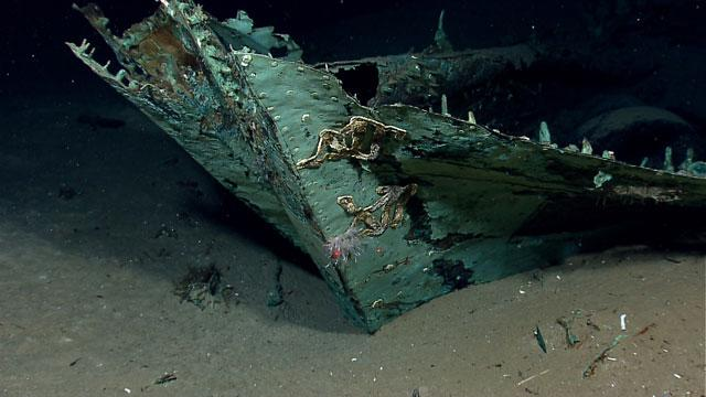 200-Year-Old Shipwreck Discovered in Gulf of Mexico