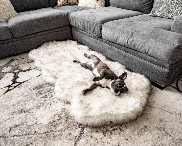 """<p><strong>Paw</strong></p><p>paw.com</p><p><strong>$199.00</strong></p><p><a href=""""https://www.paw.com/products/puprug-runner-faux-fur-memory-foam-bed-white-curve?variant=15908189208625¤cy=USD&gclid=Cj0KCQiA_rfvBRCPARIsANlV66N4UvsBViCvKR-2ZJfbTiiFx4M11VcpMRn5PfIvMMXaWy6cooxAyi8aAh2CEALw_wcB"""" rel=""""nofollow noopener"""" target=""""_blank"""" data-ylk=""""slk:SHOP IT"""" class=""""link rapid-noclick-resp"""">SHOP IT</a></p><p>This faux-fur dog bed doubles as a plush cream rug (albeit a thick one), keeping both your toes and your pup toasty in the winter.</p>"""