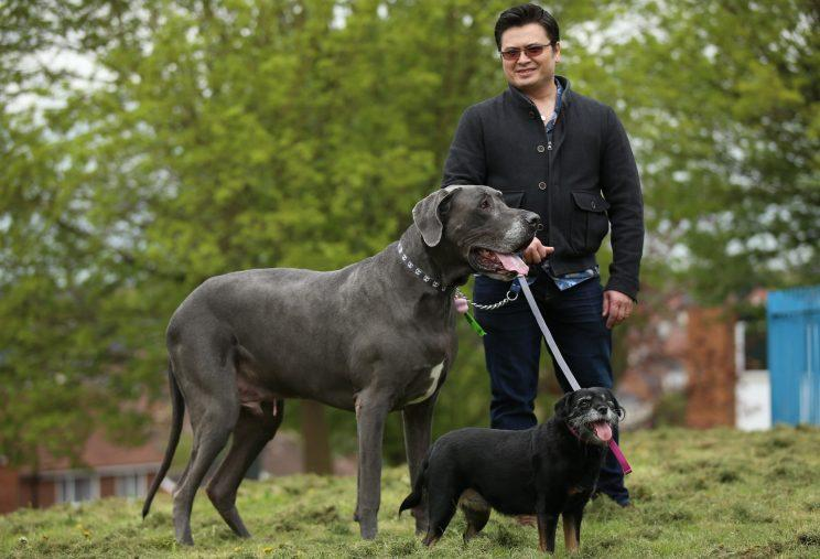 Balthazar, Fifi and owner Vinnie (Picture: SWNS)