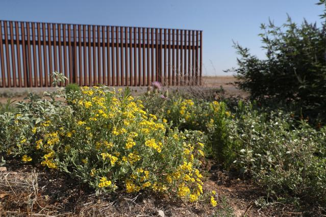<p>A mock U.S.-Mexico border fence stands inside the U.S. Border Patrol Academy on August 3, 2017 in Artesia, N.M. (Photo: John Moore/Getty Images) </p>