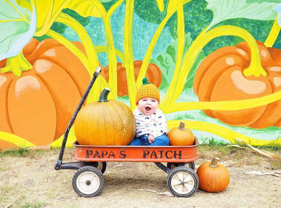 """<p><strong>Bismarck, North Dakota (Sept 12-Oct 23)</strong></p><p>Feel the fall frenzy over at <a href=""""https://papaspumpkinpatch.com/"""" rel=""""nofollow noopener"""" target=""""_blank"""" data-ylk=""""slk:Papa's Pumpkin Patch"""" class=""""link rapid-noclick-resp""""><strong>Papa's Pumpkin Patch</strong></a>, which has squash, gourds, straw bales, corn stalks and of course, plenty of pumpkins. Travel Channel named Papa's one of America's top 10 pumpkin patches and we agree with so many activities and rides to enjoy! Reopening this year, admission is $5 per person, though infants and toddlers (2 and under) can walk in for free.</p>"""