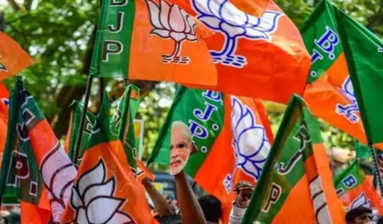 Lok Sabha elections: Four possible toehold spots for BJP in Kerala