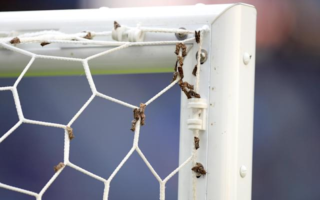 <p>A swarm of moths resting on the netting of the goal before the UEFA Euro 2016 game. </p>