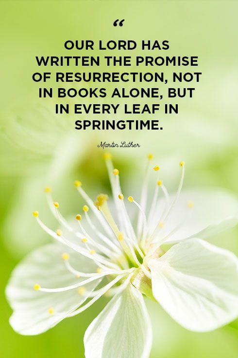 """<p>""""Our Lord has written the promise of resurrection, not in books alone, but in every leaf in springtime.""""</p>"""