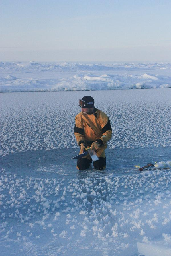 Science on Thin Ice: Polar Missions Sample Extreme Life