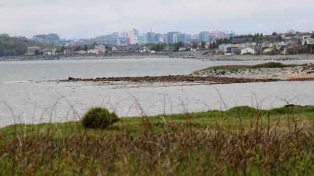 The view from Hartlen Point, a piece of land owned by the Canadian Department of National Defence, looking toward Eastern Passage with downtown Halifax on the horizon. (Brett Ruskin/CBC - image credit)