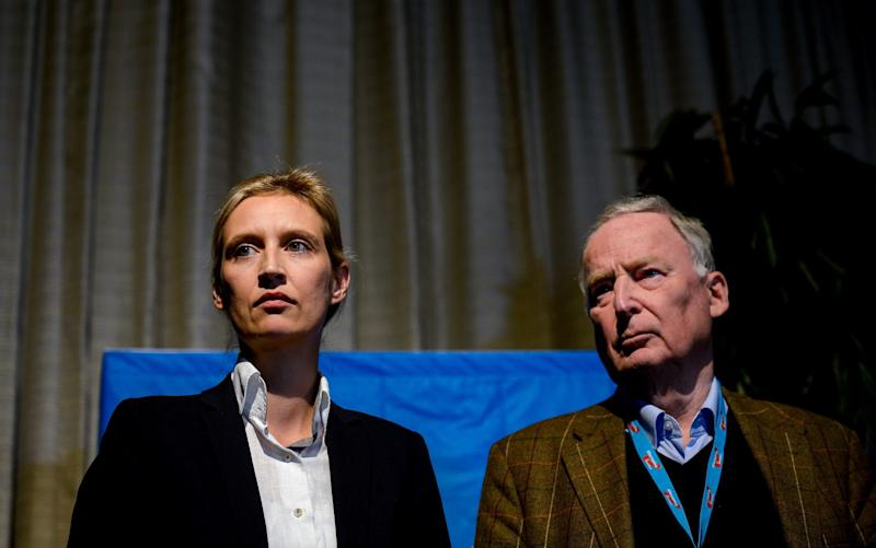 Alice Weidel and Alexander Gauland on stage at a press conference after being elected as AfD's leading duo for the general elections - Getty Images Europe