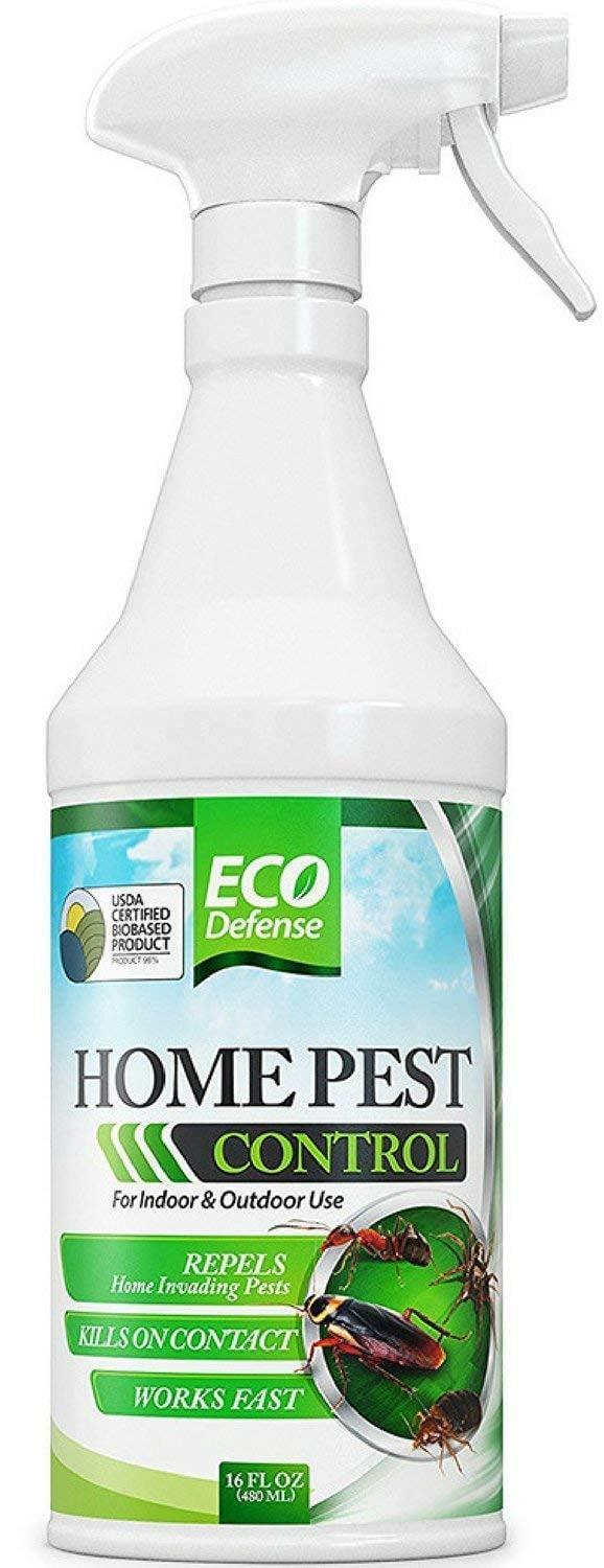 <p>Keep your home free of pests (and artificial sprays) using the <span>Eco Defense Home Pest Control Spray</span> ($20).</p>