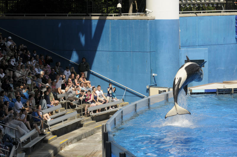 SeaWorld files to go public with $100 million IPO