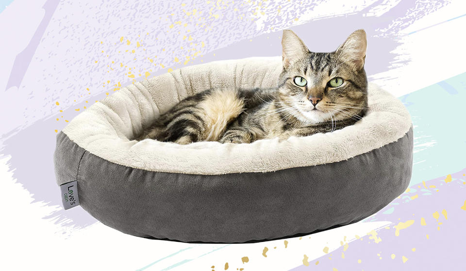 Because, you know, sleeping isn't attractive enough to cats already... (Photo: Amazon)