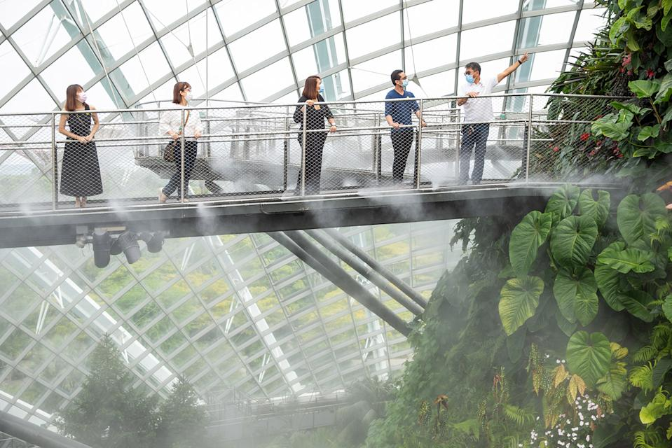 Gardens by the Bay Cloud Forest reopen