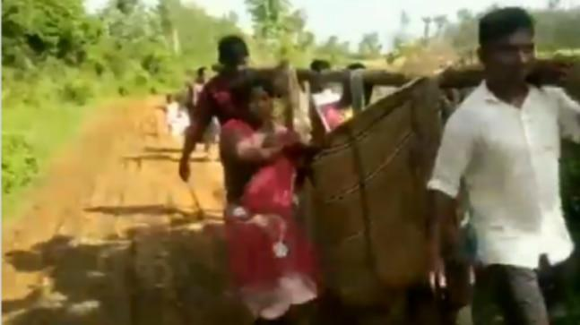 The incident took place in a tribal village of Kothavalasa in Visakhapatnam, Andhra Pradesh, where villagers carried a pregnant woman in a 'doli' as the village lacks adequate road connectivity to the hospital.