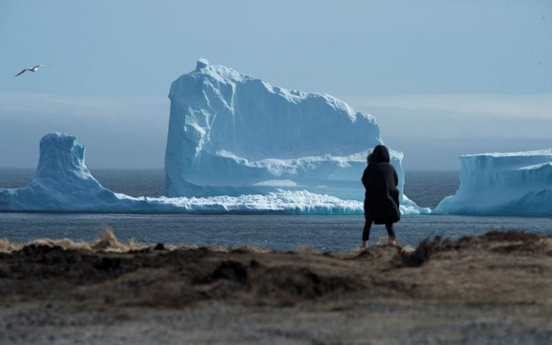 The first iceberg of the season as it passes the South Shore near Ferryland Newfoundland - Credit: Greg Locke/Retuters