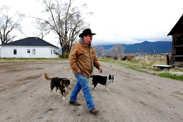 A man walks on a rural property accompanied by two dogs.